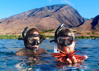 snorkeling in west maui waters you find all kinds of creatures